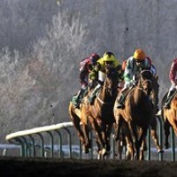 All-Weather Track Winning Approach
