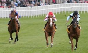 Horse-Racing001