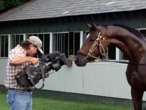 Horse_Camera